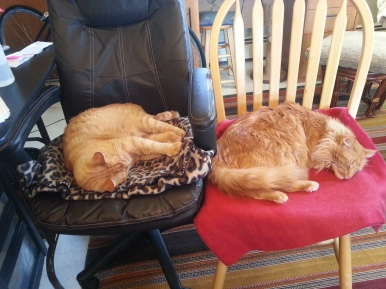 Office Assistants