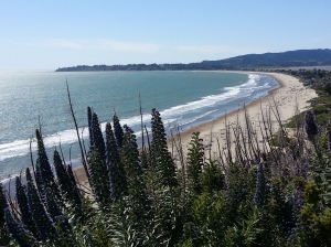 Stinson Beach, CA